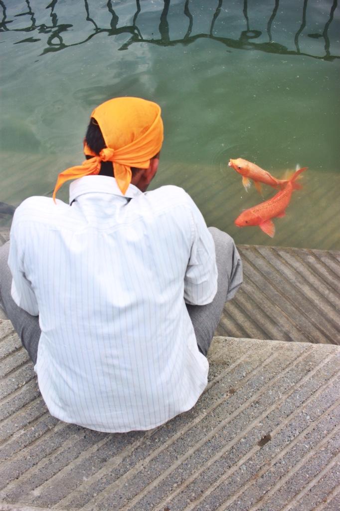 Orange bandana, orange koi at The Golden Temple