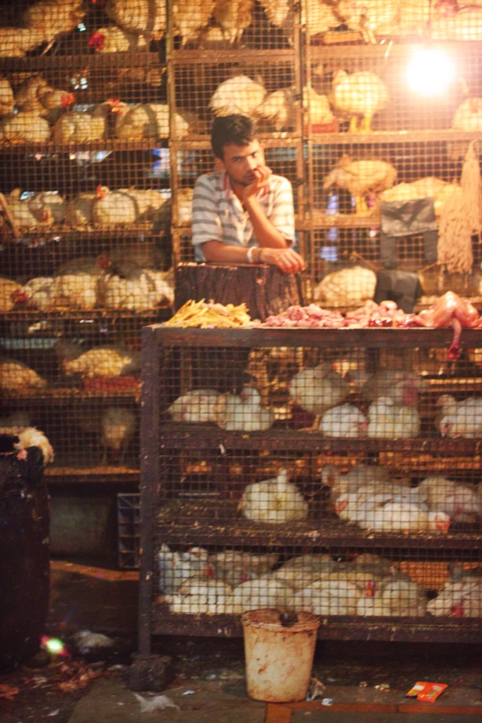 Mumbai market chickens in cages about to be butchered